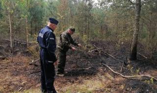 Podpalacz lasu złapany na gorącym uczynku. Mężczyzna miał prawie 3 promile alkoholu