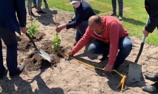 Na terenie Łódzkiego Ośrodka Doradztwa Rolniczego w Bratoszewicach powstaje winnica